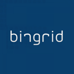 Bingrid Software ERP