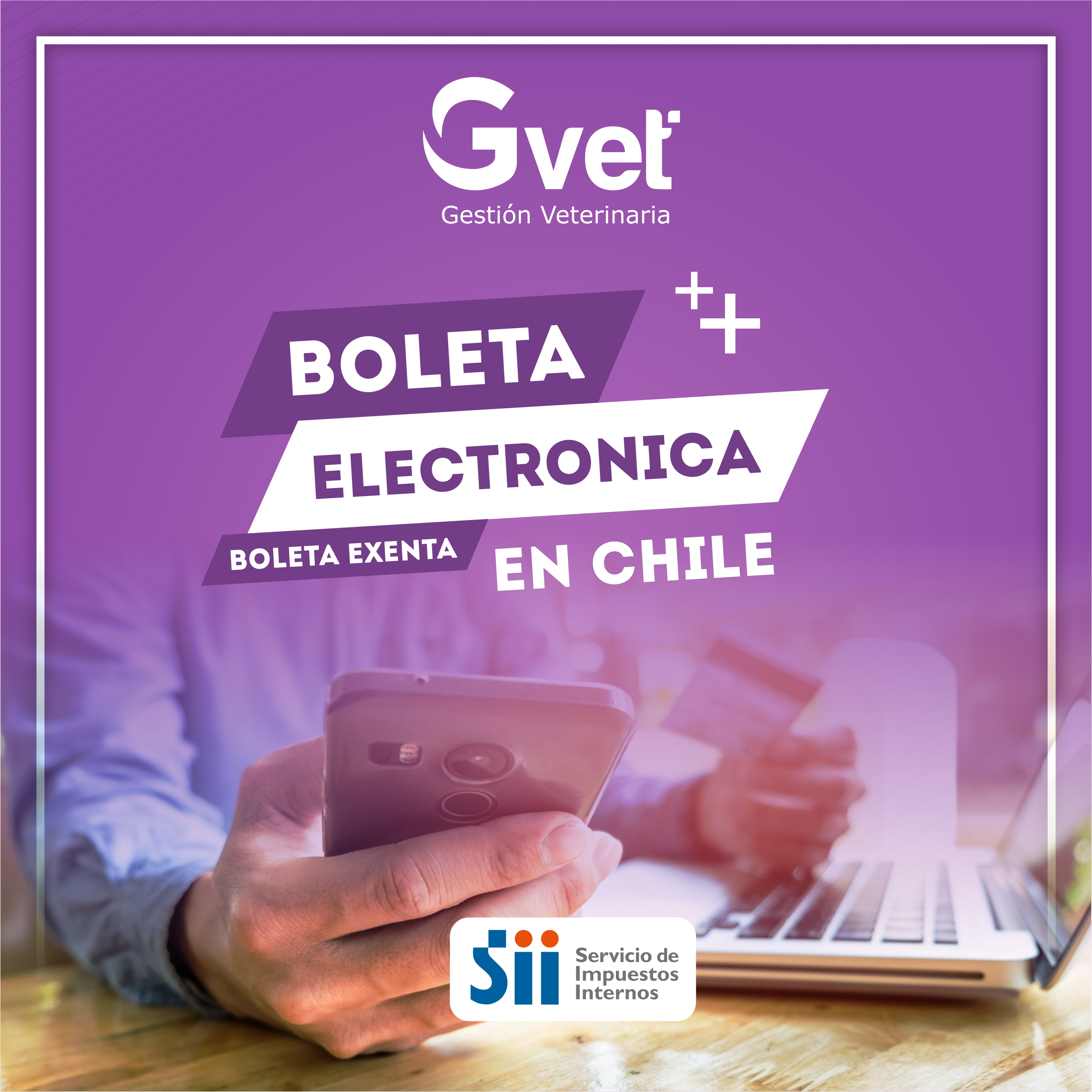 GVET Software Veterinario