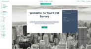 Super Simple Survey