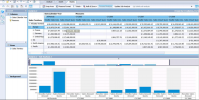 SAP BusinessObjects BI
